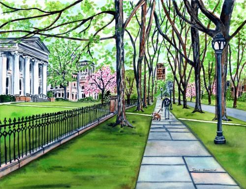 Yale Hillhouse Ave